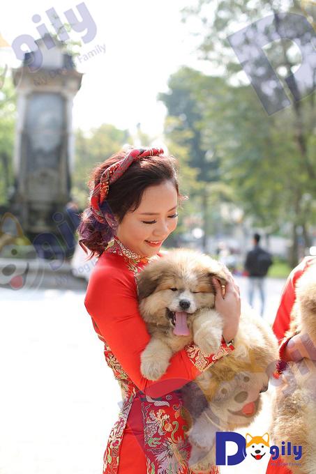 Dogily Petshop là nhà nhập khẩu chó mèo lớn nhất tại Việt Nam hiện nay. Bạn hoàn toàn yên tâm khi đặt niềm tin vào chúng tôi.