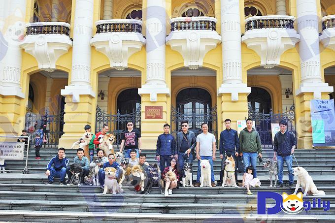 Team Dogily Petshop và Hội những người yêu Akita Inu Việt Nam tại Nhà hát lớn, Hà Nội năm 2018.