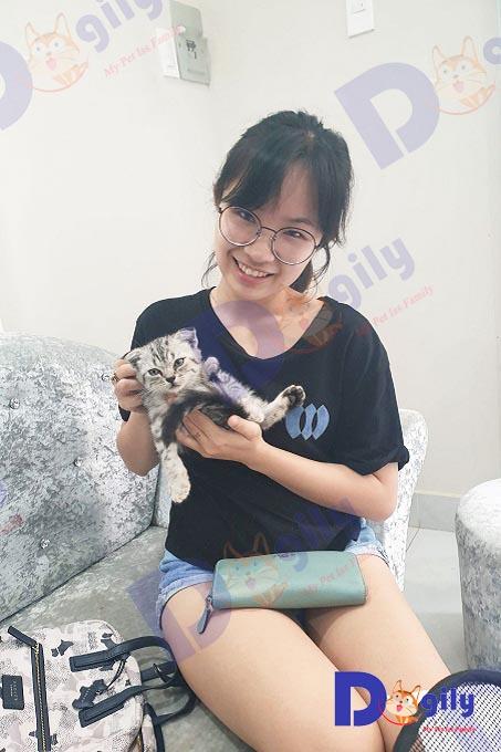 Ảnh: khách hàng mua mèo Aln màu tabby tại Dogily Petshop Quận 1 (HCM).