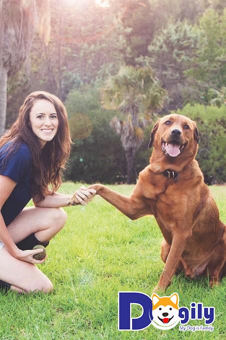 Hãy duy trì bầu không khí vui vẻ khi huấn luyện cún