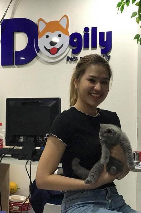 Khách hàng mua mèo Aln con béo ú thuần chủng chuẩn 2 tháng tuổi tại Dogily Petshop quận 1, Sài Gòn.