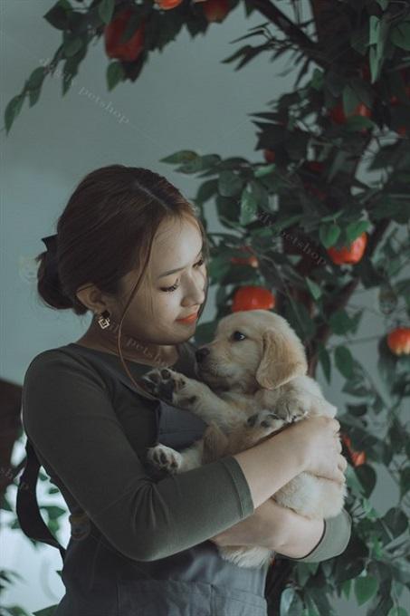 Chó Golden rất tình cảm và quấn chủ. Luôn thích được chủ nhân ôm vào lòng để vuốt ve, âu yếm.