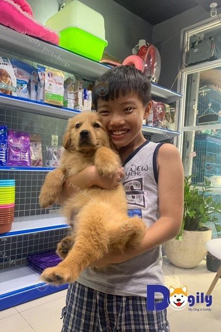 Khách hàng nhí mua chó Gâu Đần tại Dogily Pet Shop Phú Nhuận, Sài Gòn.