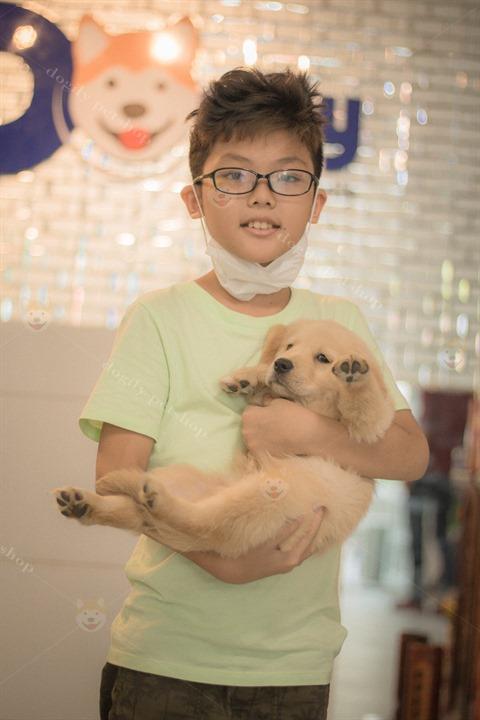 Hình ảnh khách hàng nhí mua chó Golden Retriever tại Dogily Petshop Ba Tháng Hai, quận 10, Tphcm.