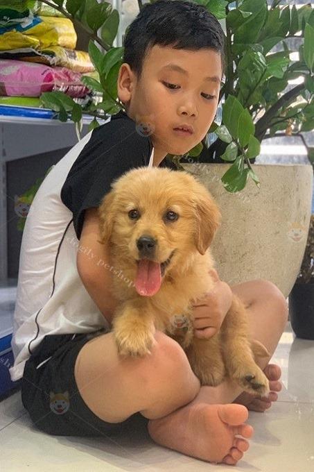 Bạn nhỏ mua chó Gâu Đần tại Dogily Pet shop quận 1, Sài Gòn.