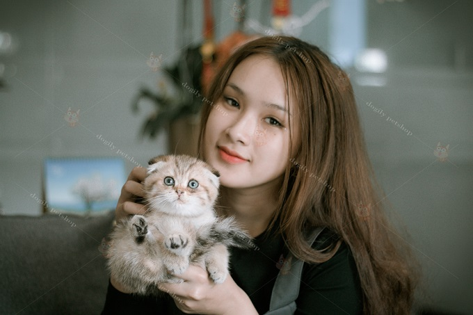 Khách hàng mua mèo British Shorthair luôn nhận được sự chia sẻ, lắng nghe từ đội ngũ nhân viên, bác sĩ của Dogily. Để lựa chọn bé mèo phù hợp nhất, làm thế nào để chăm sóc tốt nhất cho mèo cưng của mình.