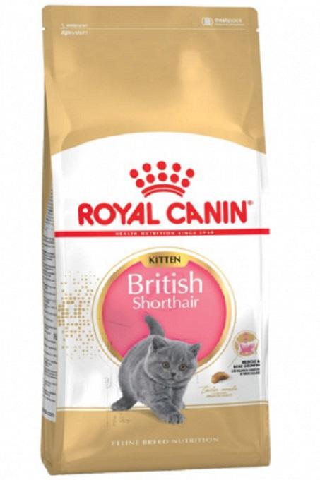 Thức ăn hạt khô thương hiệu Royal Canin cho mèo Scottish Fold tai cụp.