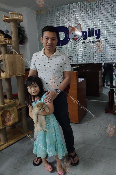 Hai ba con mua mèo Aln màu Golden tai cụp tại Dogily Petshop Ba Tháng Hai, quận 10, Tp HCM.