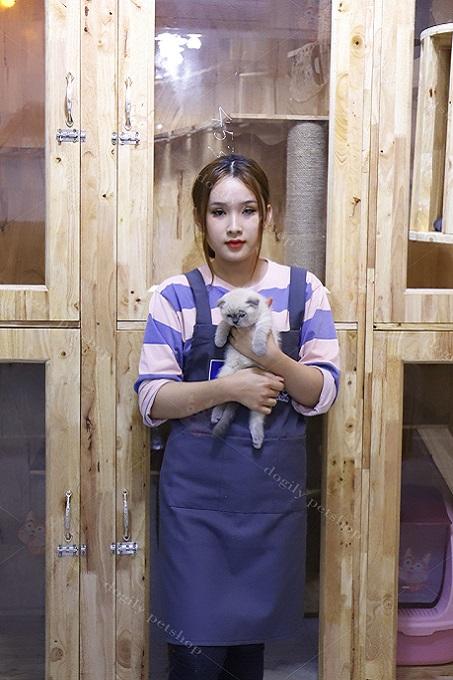 Khu chuồng trại nuôi mèo tai cụp Scottish tại Dogily Pet Shop Sài Gòn.