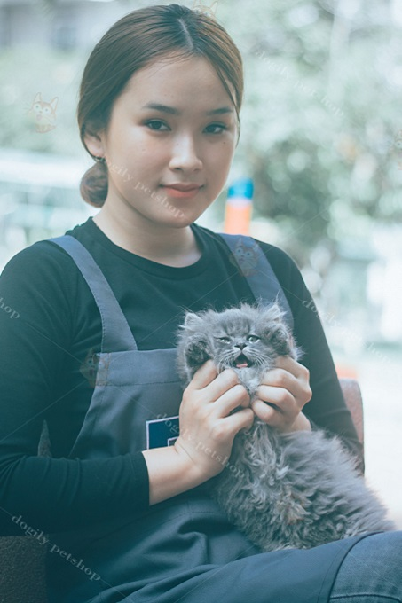 Nhân viên tư vấn của Dogily Cattery luôn lắng nghe và hỗ trợ tư vấn nuôi và chăm sóc mèo Ald 24/7.