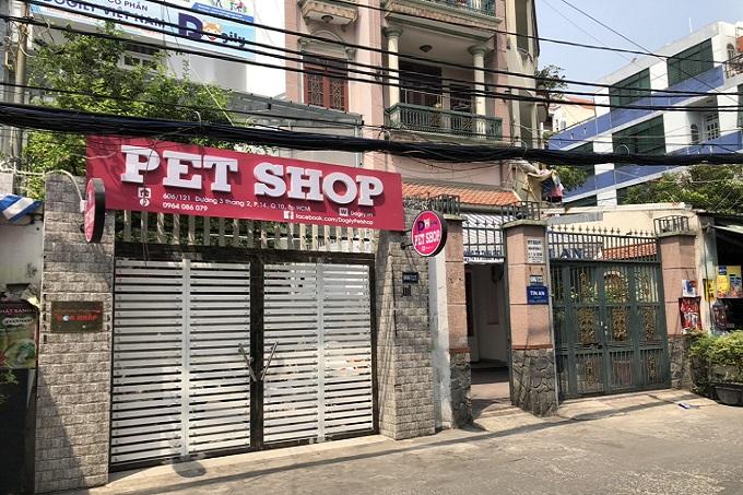 Cửa hàng bán mèo Ba Tư 34 Dogily Petshop Ba Tháng Hai, quận 10, Tphcm