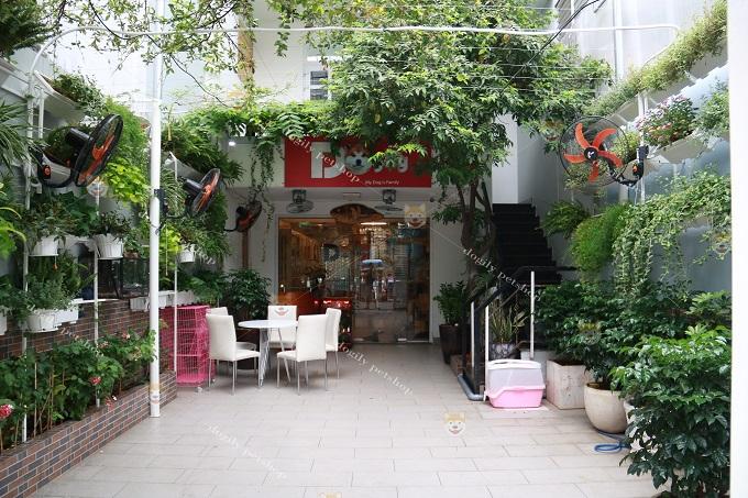 Không gian cửa hàng Dogily Petshop