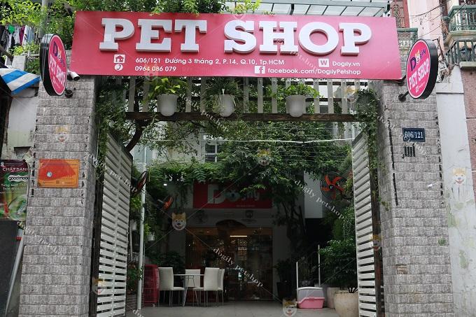 Mặt tiền cửa hàng bán chó Dogily Sài Gòn