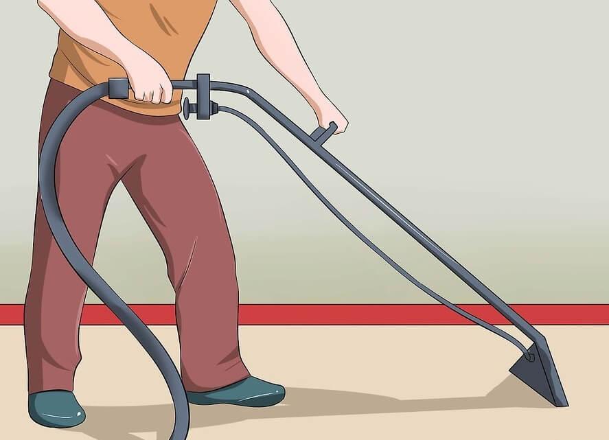Làm sao để chó đi vệ sinh đúng chỗ: Dọn sạch sẽ chỗ bẩn khi chó đi bậy