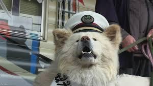 Trưởng ga tàu mẫn cán Wasao