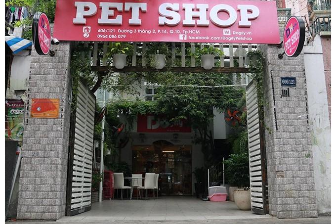 Cửa hàng bán chó cảnh uy tín Dogily Petshop