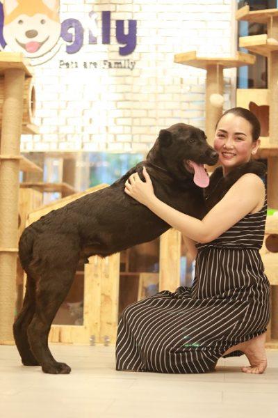 Cửa hàng chó cảnh Dogily Petshop