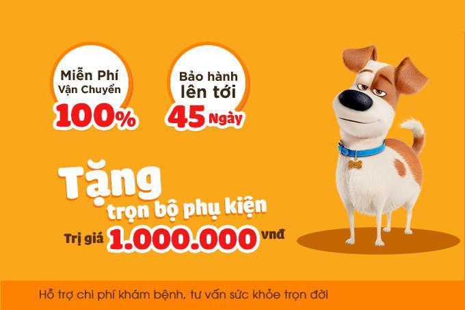 Chính sách hỗ trợ khi mua chó cảnh tại Dogily Pet Shop.
