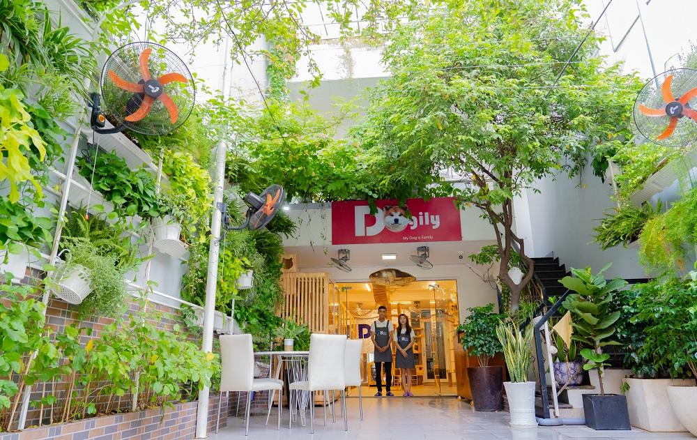 Khách sạn chó mèo Dogily Pet Hotel.