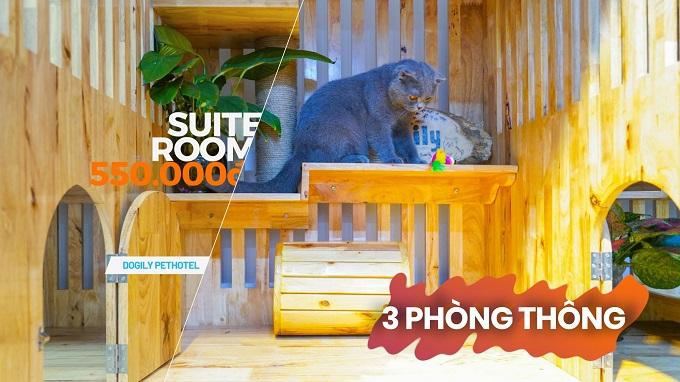 Phòng Suite khách sạn chó mèo