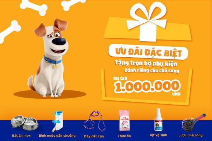 Khách hàng được tặng combo phụ kiện khi mua chó cảnh tại các cửa hàng thuộc hệ thống Dogily Pet Shop Tpchm, Hà Nội.