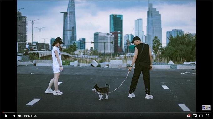 Video Chó Husky