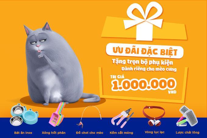 Tặng kèm bộ combo phụ kiện 1 triệu đồng cho khách mua mèo Scottish Fold tại Dogily Pet Shop.