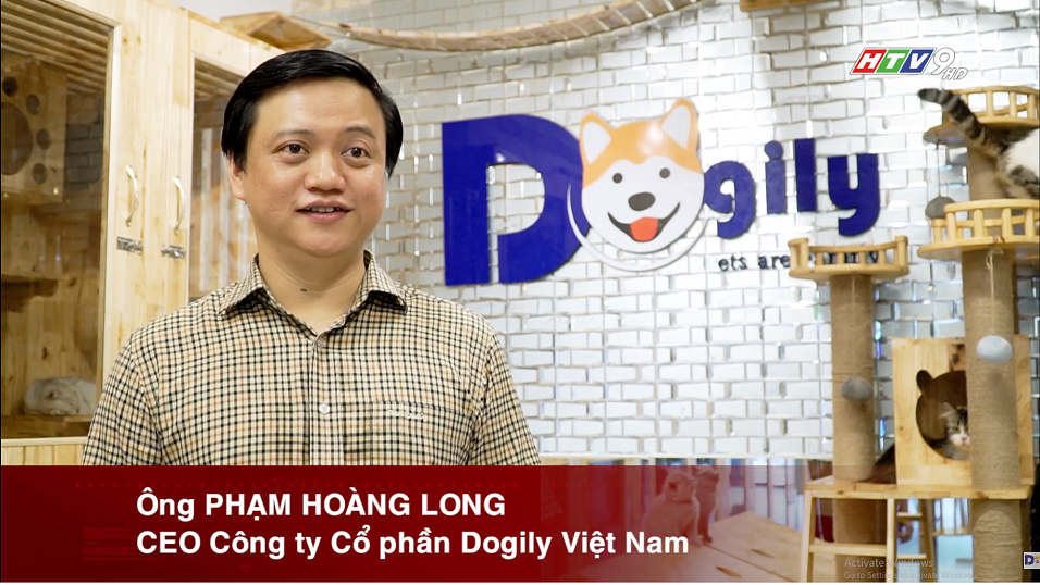 Chó Corgi Pembroke & Cardigan – Mua bán chó Corgi con tại Dogily Petshop Hà Nội, TpHCM