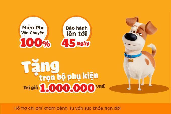 Chinh sách bảo hành, hỗ trợ hấp dẫn khi mua chó Labrador tại Dogily Petshop.