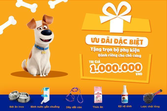 Khách hàng mua chó Labrador tại hệ thống Dogily Petshop sẽ có điều kiện tặng kèm bộ combo phụ kiện trí giá 1 triệu đồng.