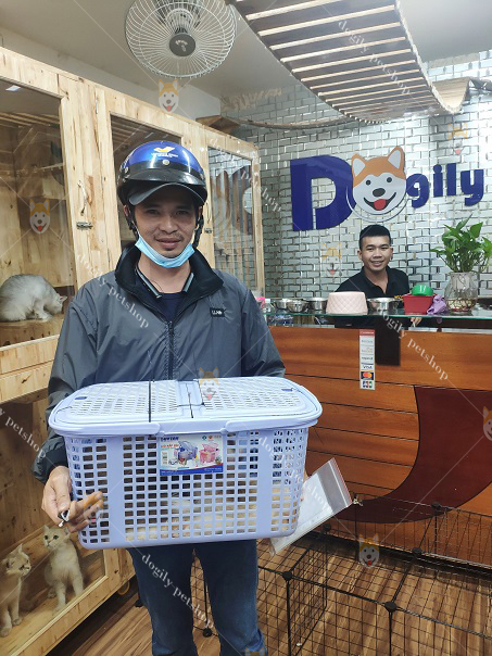 Khách hàng mua chó Alaska tại Dogily Petshop