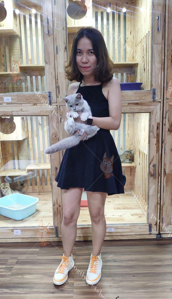 Khách hàng mua mèo tại Dogily Petshop