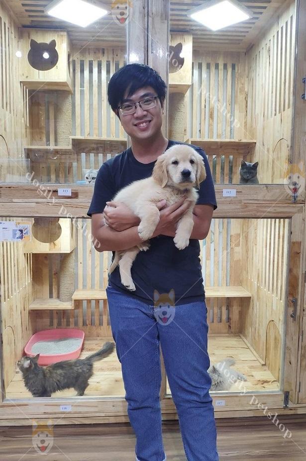 Chó Golden Retriever