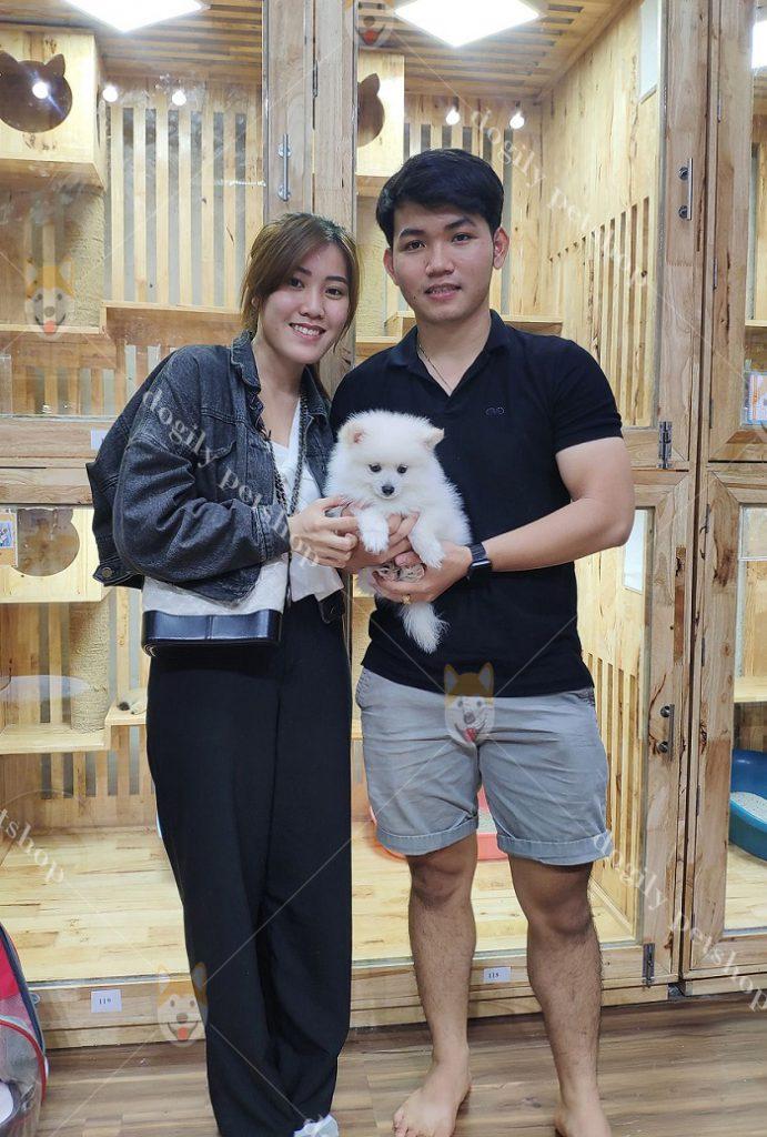 Khách hàng mua chó cảnh tại Dogily PetshopKhách hàng mua chó cảnh tại Dogily Petshop