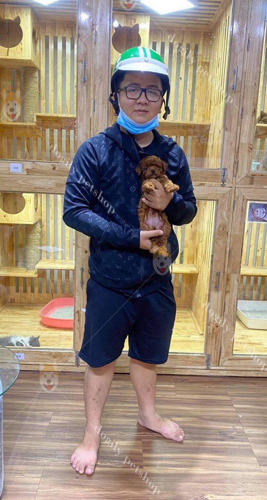 mua bán chó cảnh giá tốt tại Dogily Petshop Hà Nội, TP.HCM