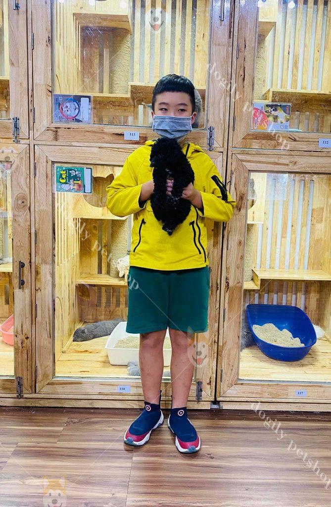 Khách hàng nhí tại Quận 2 mua chó Poodle đen tại Dogily Petshop 3/2.