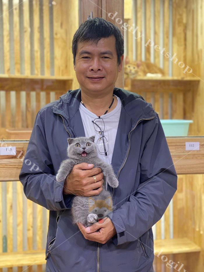 Mua mèo Munchkin con thuần chủng, chất lượng, giá tốt nhất tại Dogily Petshop
