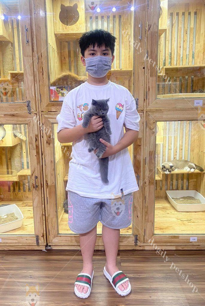 Khách hàng nhí tại quận Tân Bình, Tp.HCm mua mèo Munchkin con thuần chủng màu xám xanh tại Dogily Petshop.