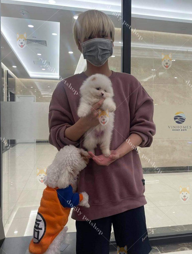 mua chó tại Dogily Petshop