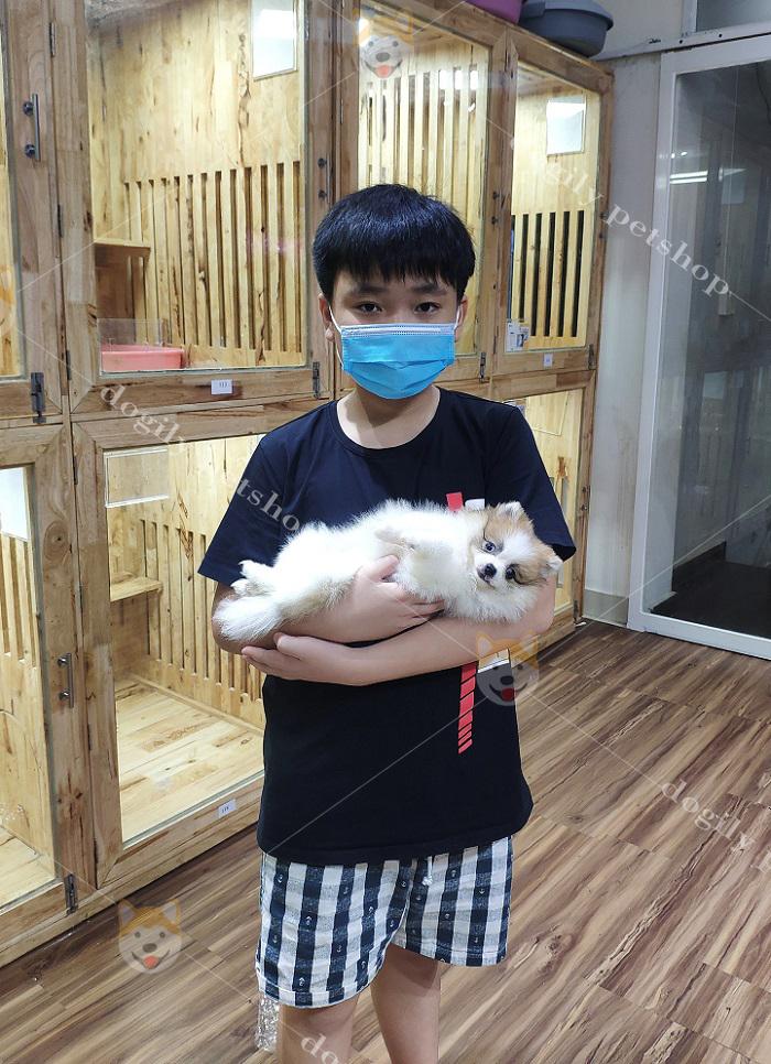 Hình ảnh khách hàng mua chó Fox Sóc tại Dogily Petshop